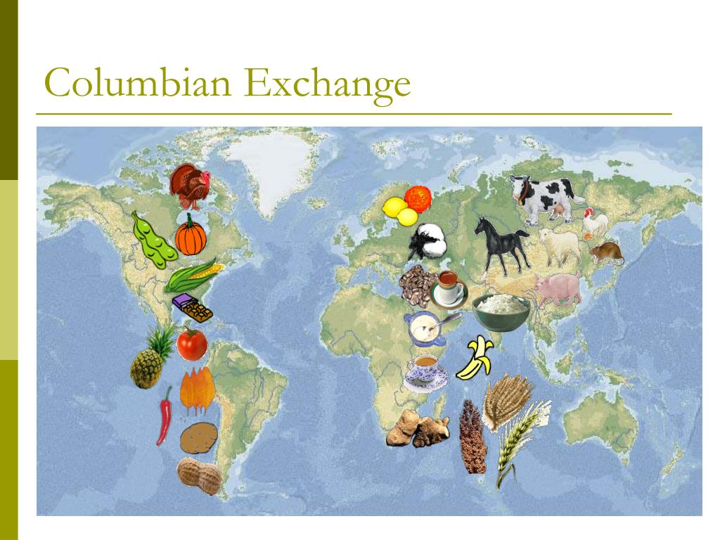 a review of the columbian exchange American history essays: the columbian exchange and the effects on europe.