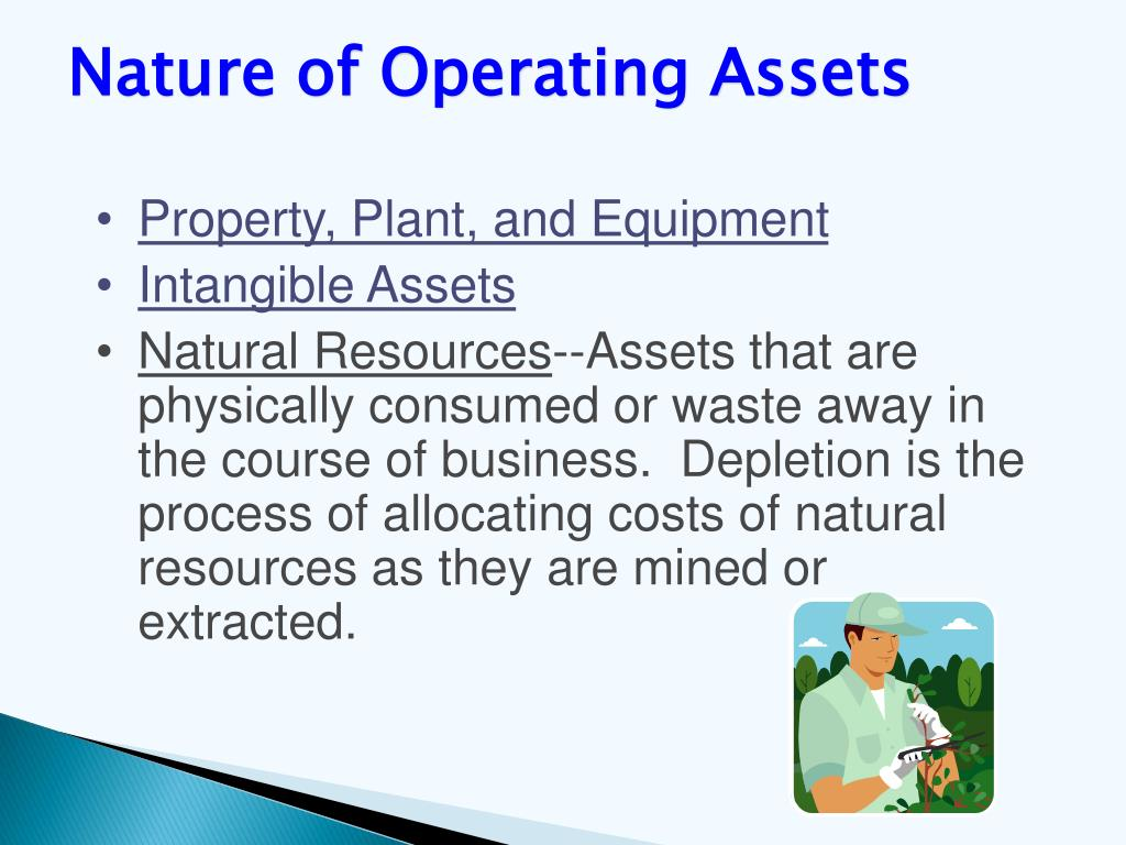 Nature of Operating Assets