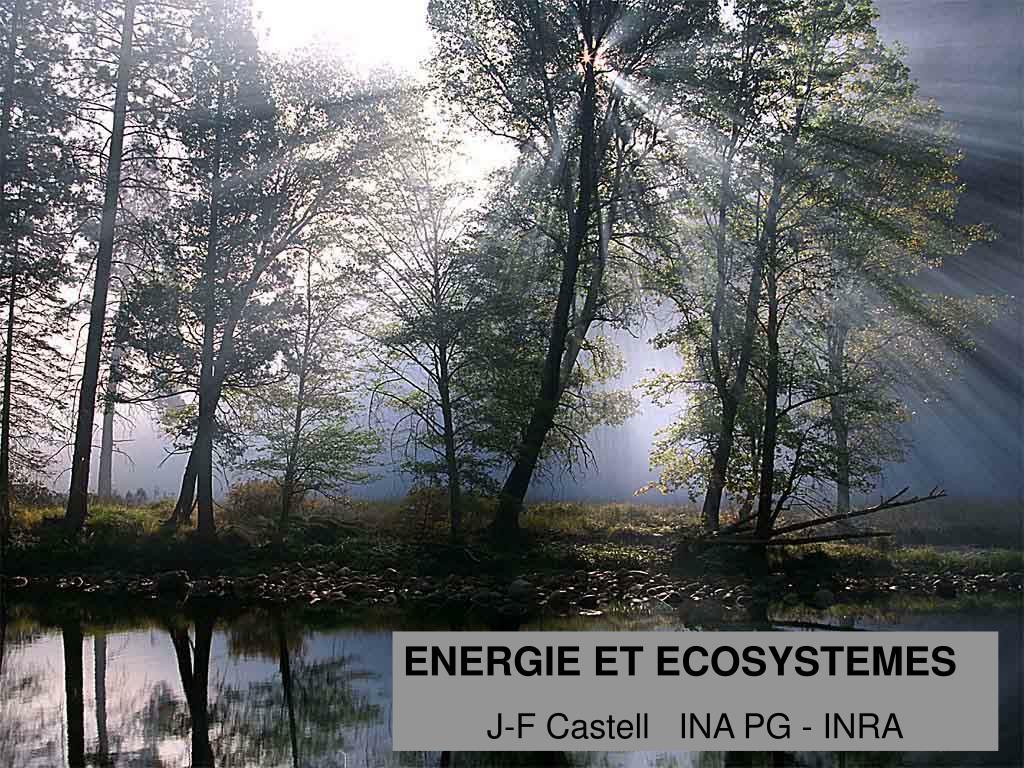 ENERGIE ET ECOSYSTEMES