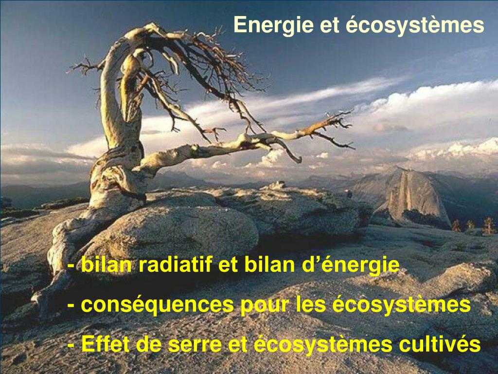 Energie et écosystèmes
