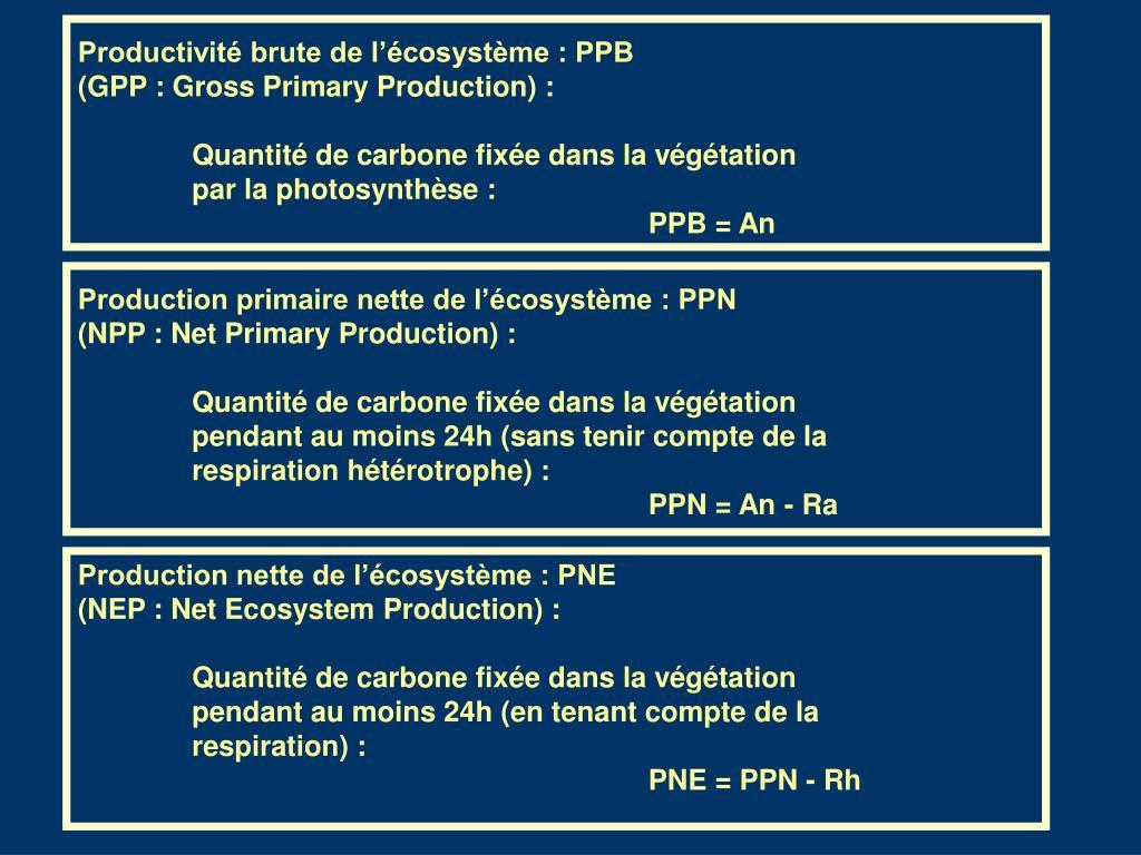 Productivité brute de l'écosystème : PPB
