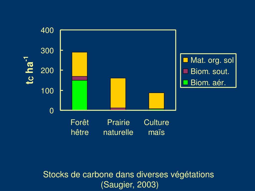 Stocks de carbone dans diverses végétations