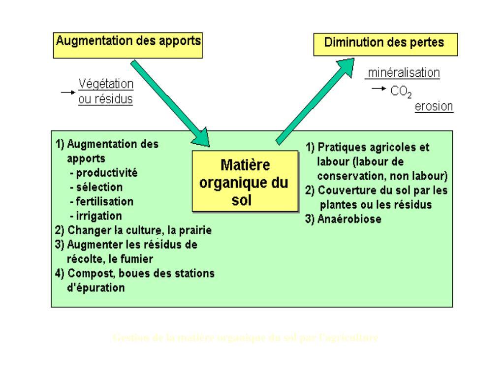 Gestion de la matière organique du sol par l'agriculture