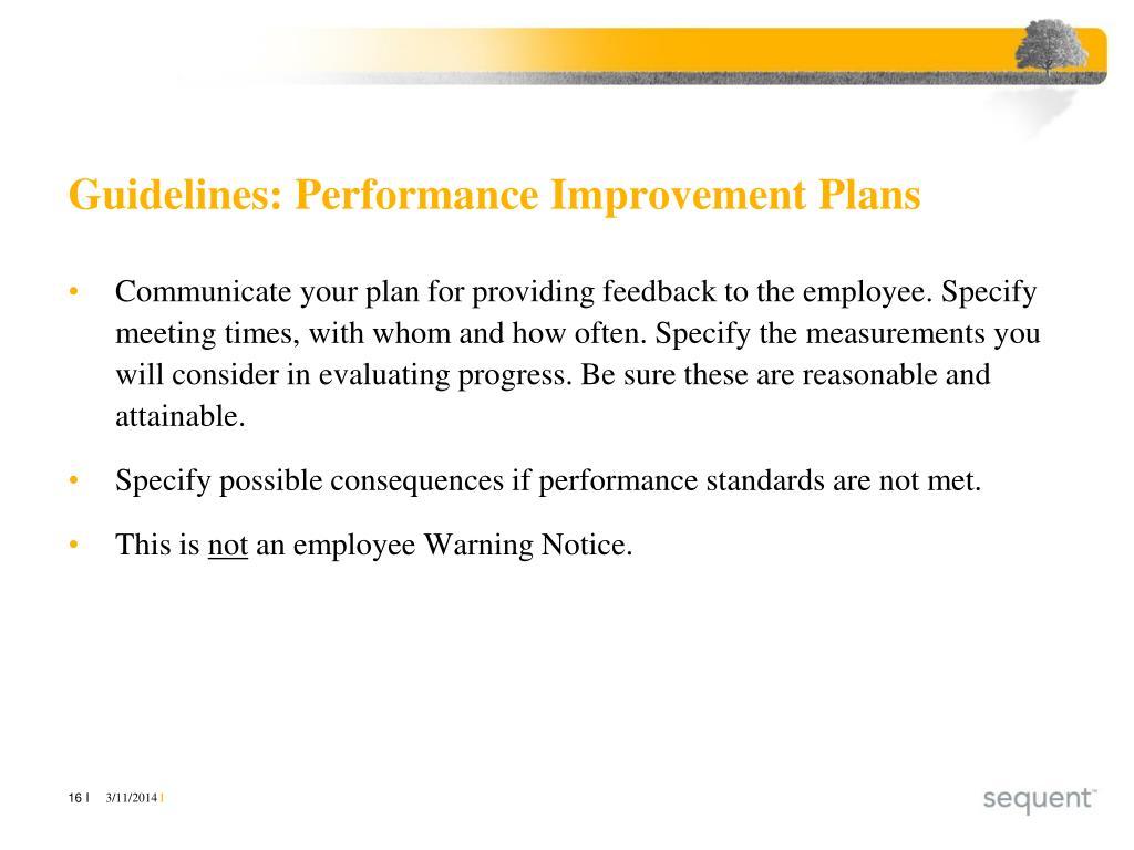 Guidelines: Performance Improvement Plans