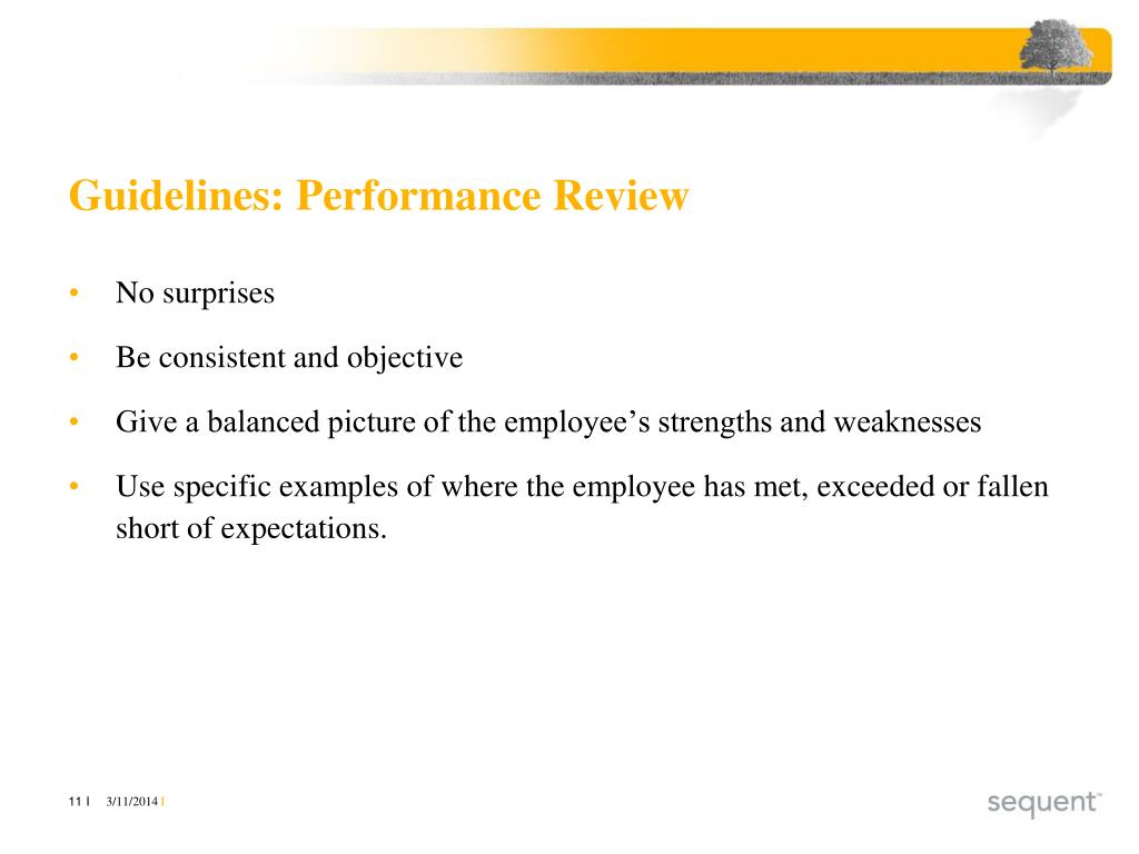 Guidelines: Performance Review