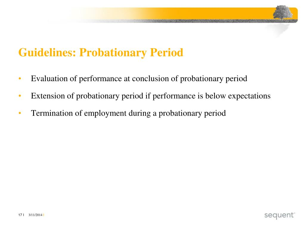 Guidelines: Probationary Period