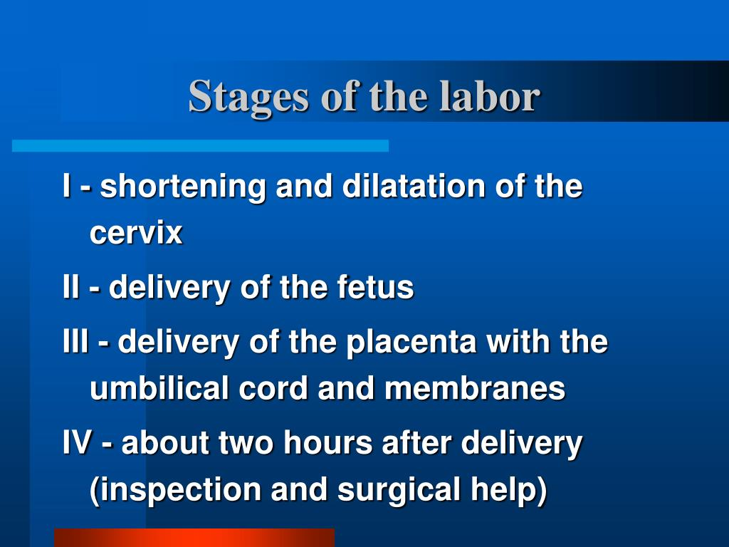Stages of the labor