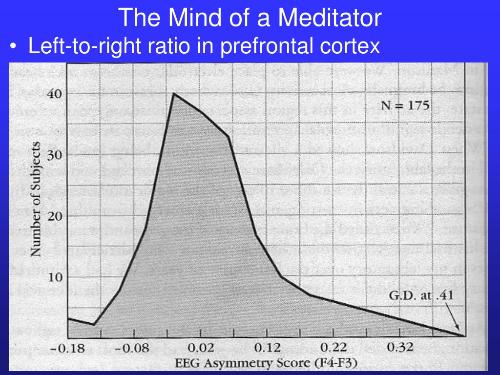 The Mind of a Meditator