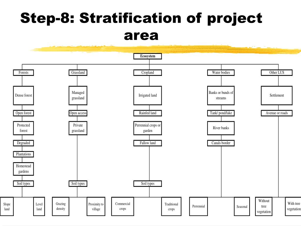 Step-8: Stratification of project area