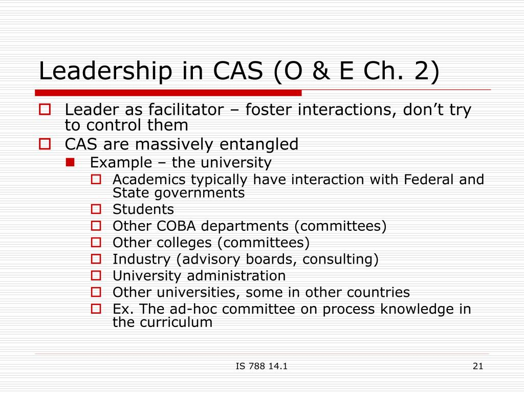 Leadership in CAS (O & E Ch. 2)