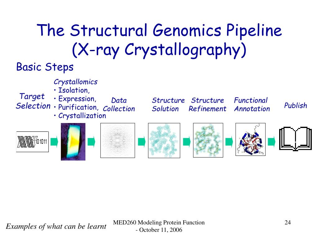 The Structural Genomics Pipeline