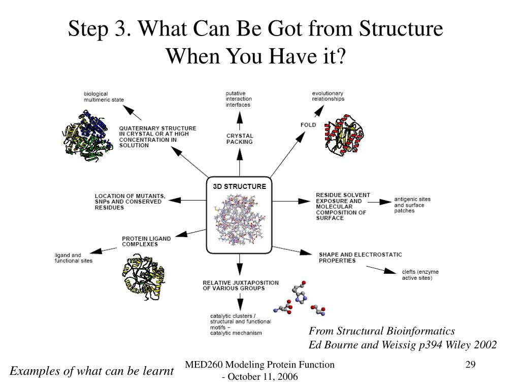 Step 3. What Can Be Got from Structure When You Have it?