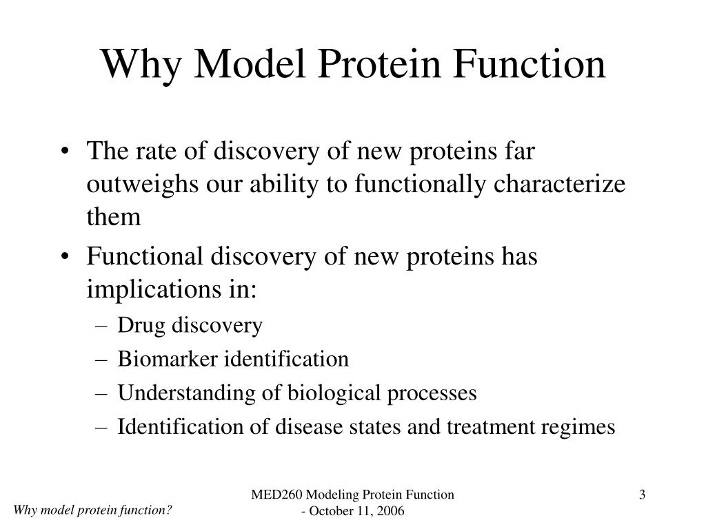 Why Model Protein Function