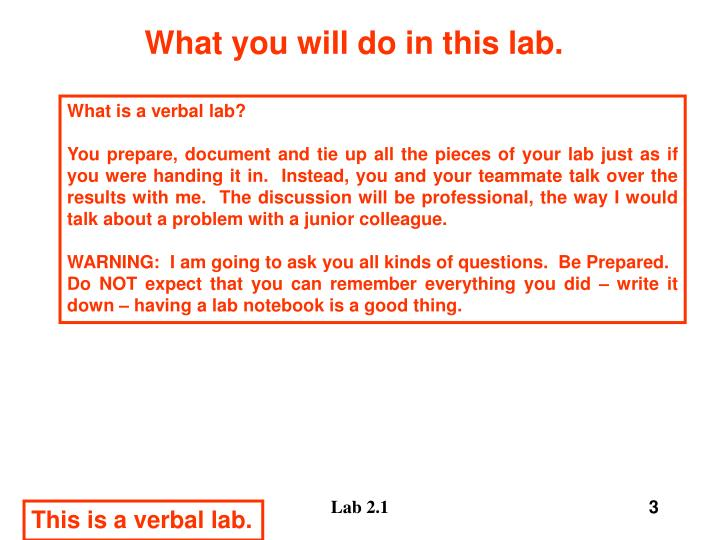 What you will do in this lab3