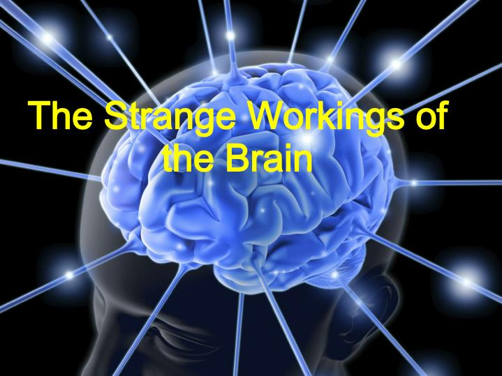 The Strange Workings of the Brain