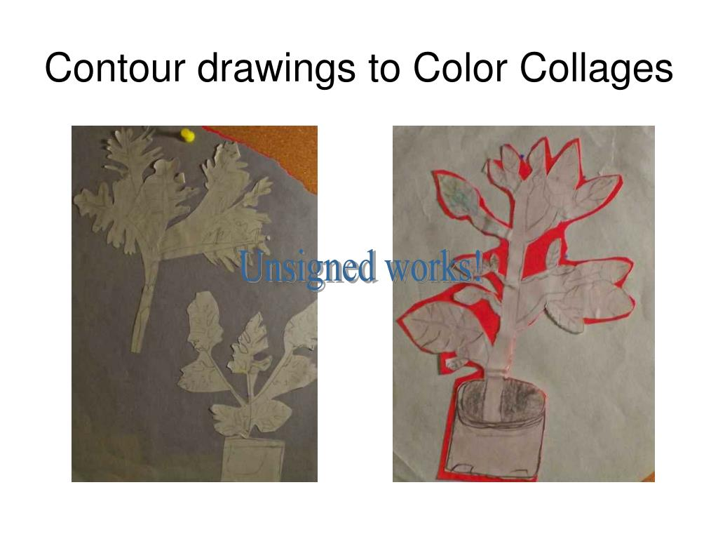 Contour drawings to Color Collages