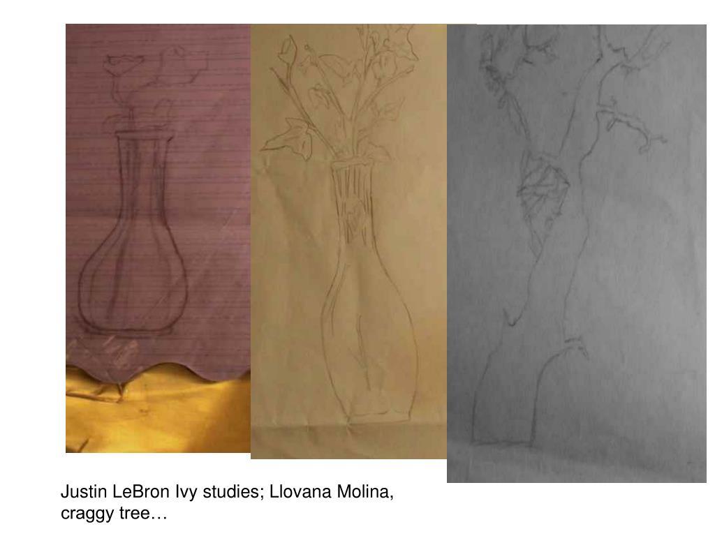 Justin LeBron Ivy studies; Llovana Molina, craggy tree…