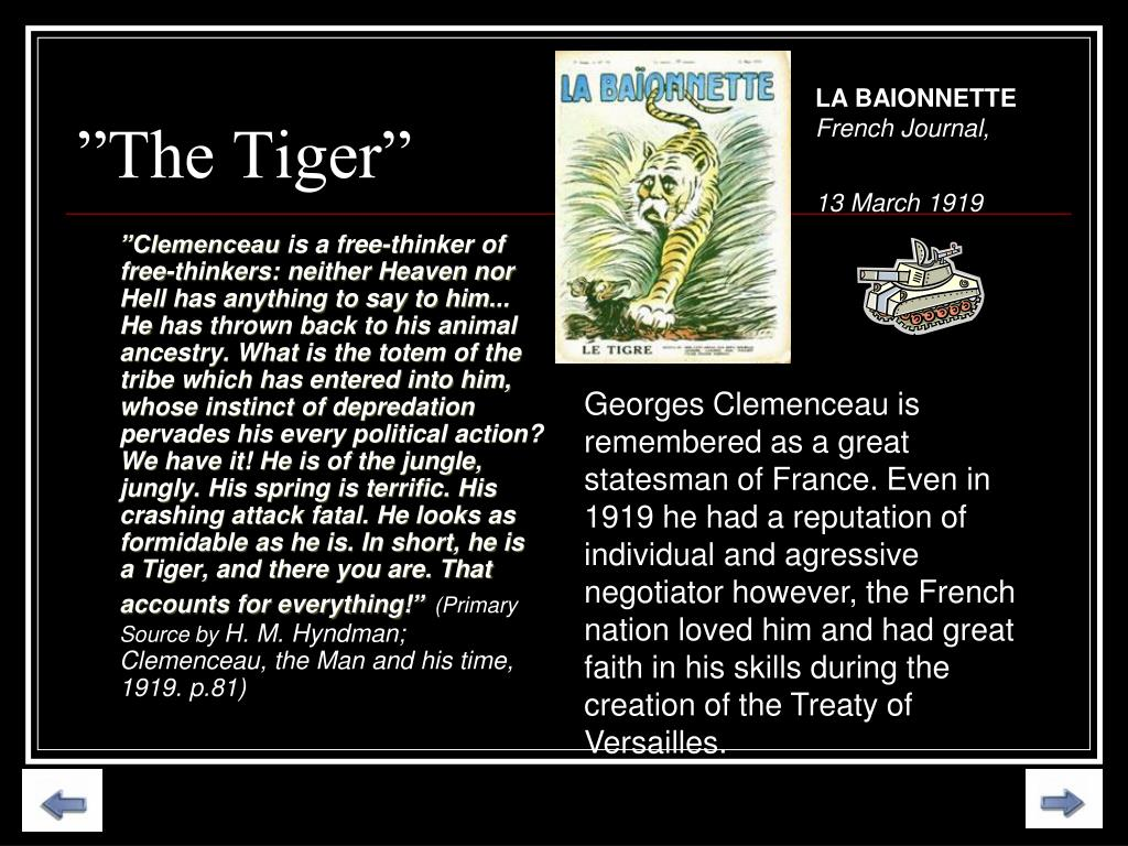 """""""The Tiger"""""""