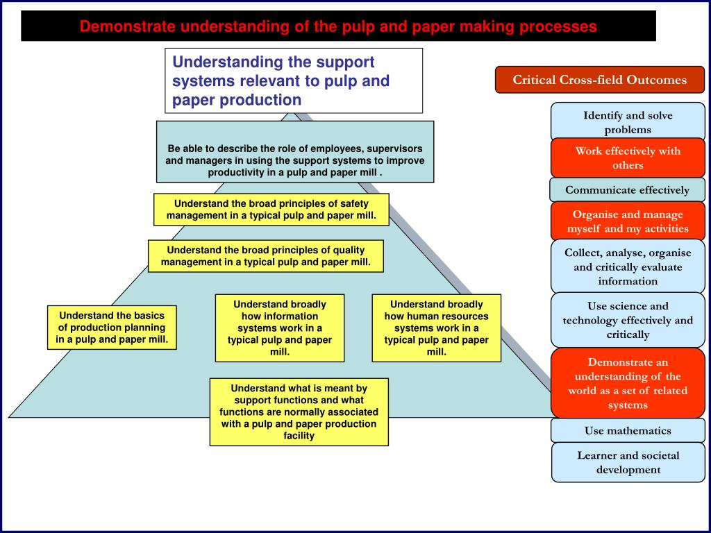 Understanding the support systems relevant to pulp and paper production