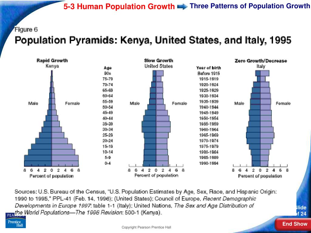 Three Patterns of Population Growth