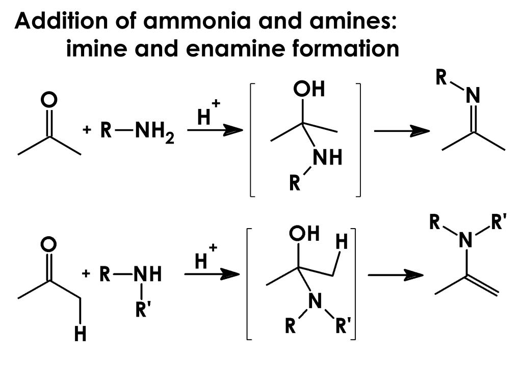 Addition of ammonia and amines: