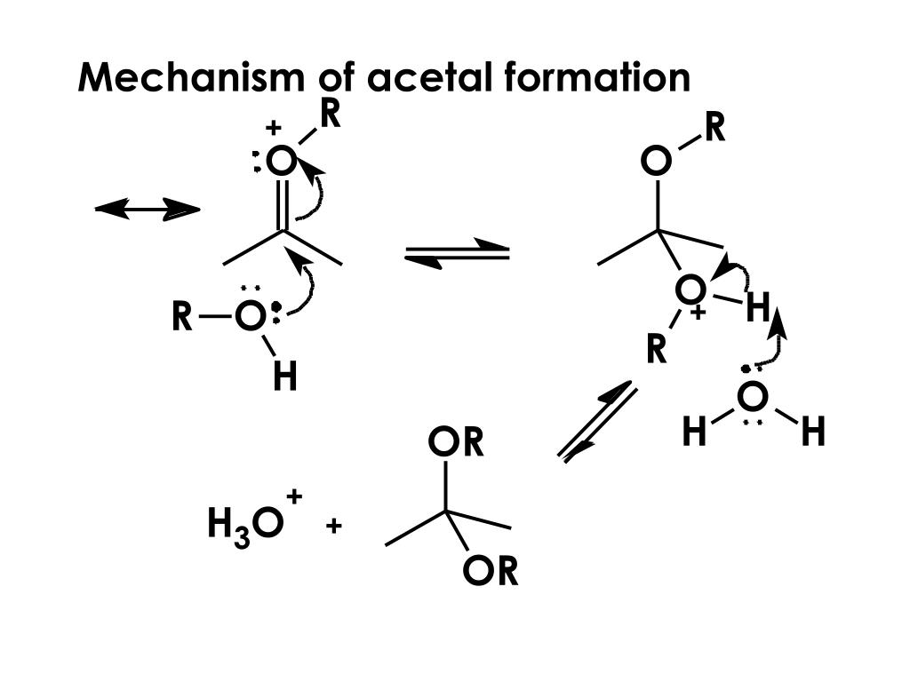 Mechanism of acetal formation