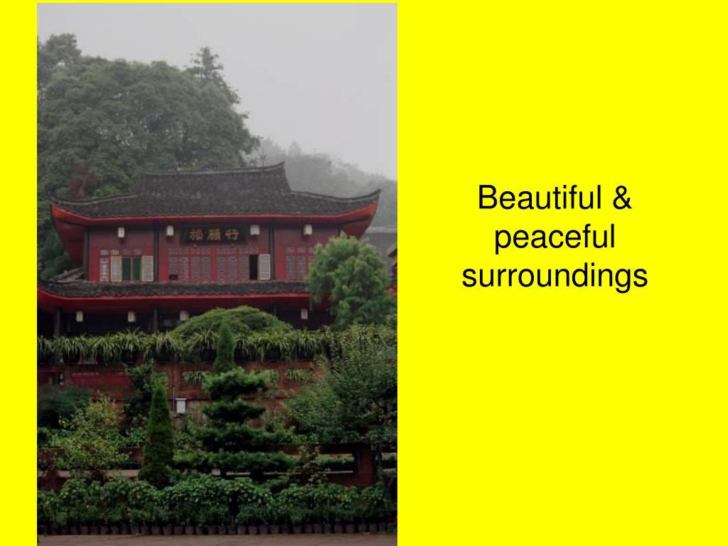 Beautiful & peaceful surroundings