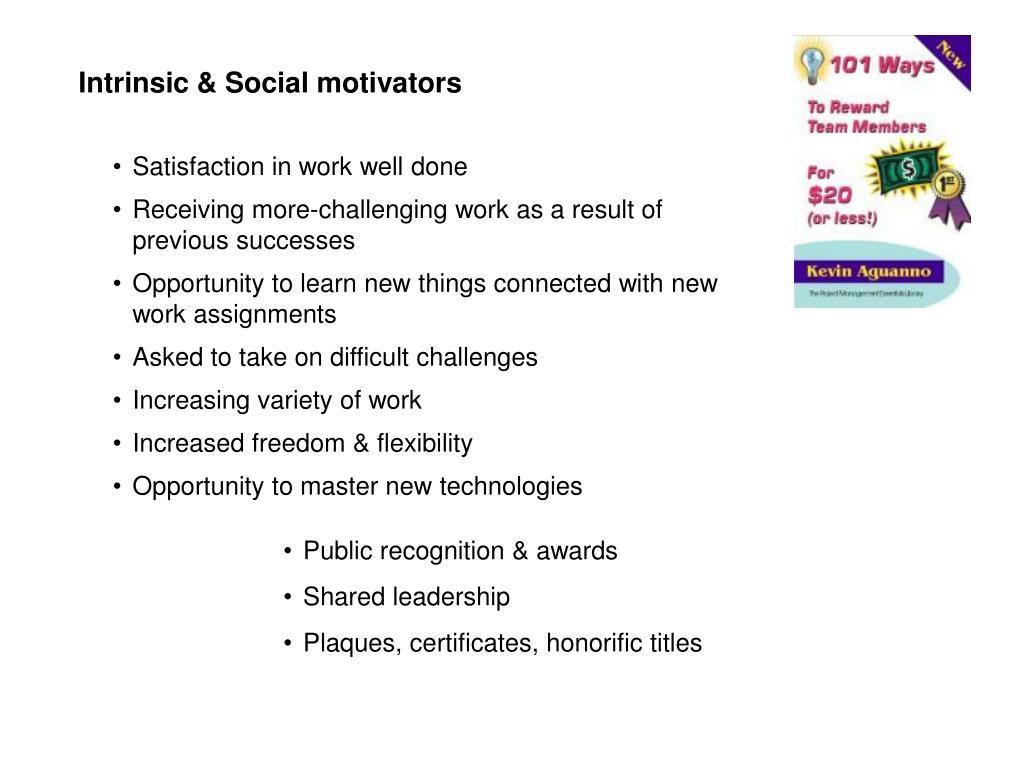 Intrinsic & Social motivators