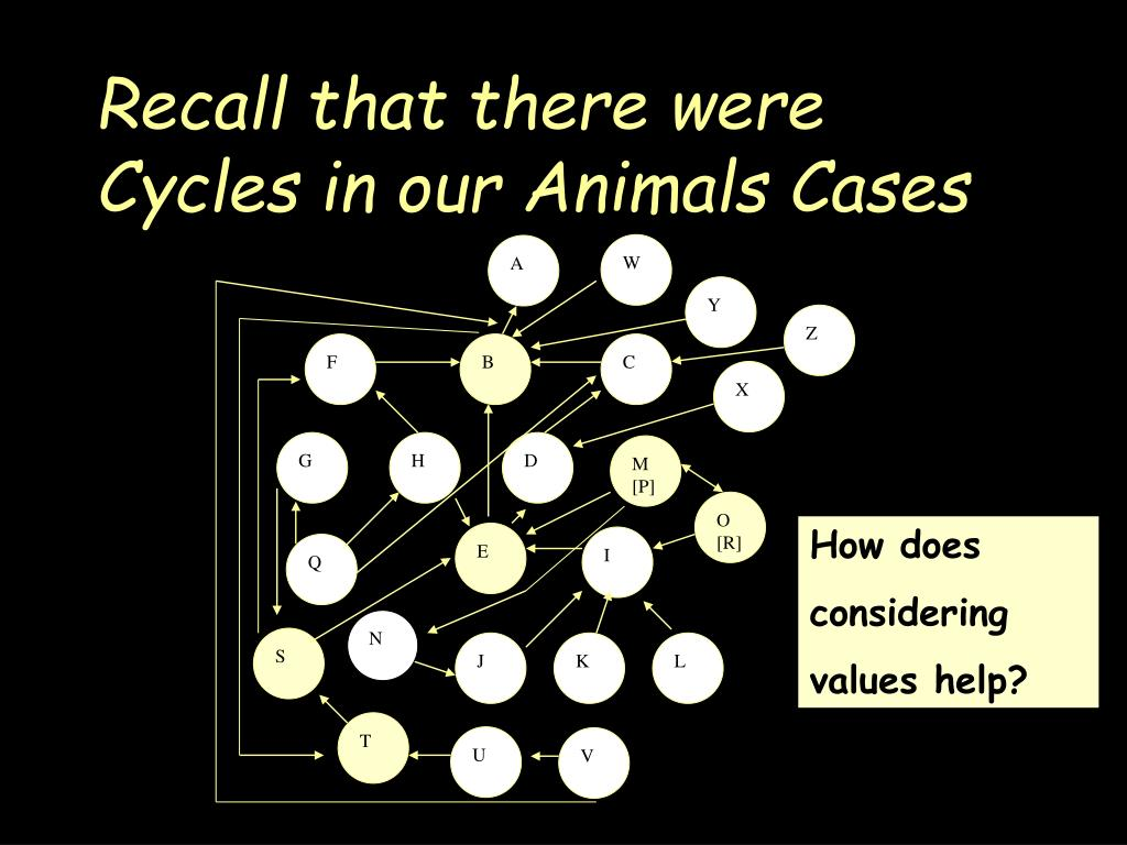 Recall that there were Cycles in our Animals Cases