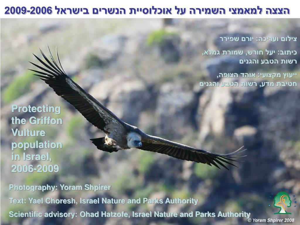 הצצה למאמצי השמירה על אוכלוסיית הנשרים בישראל