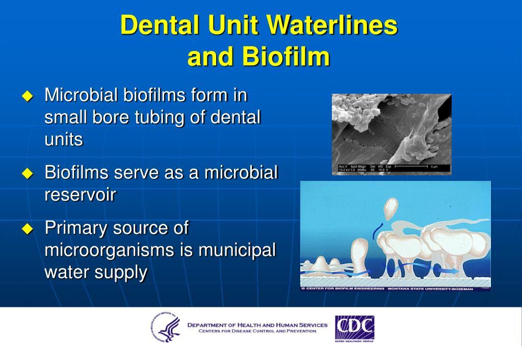 Dental Unit Waterlines
