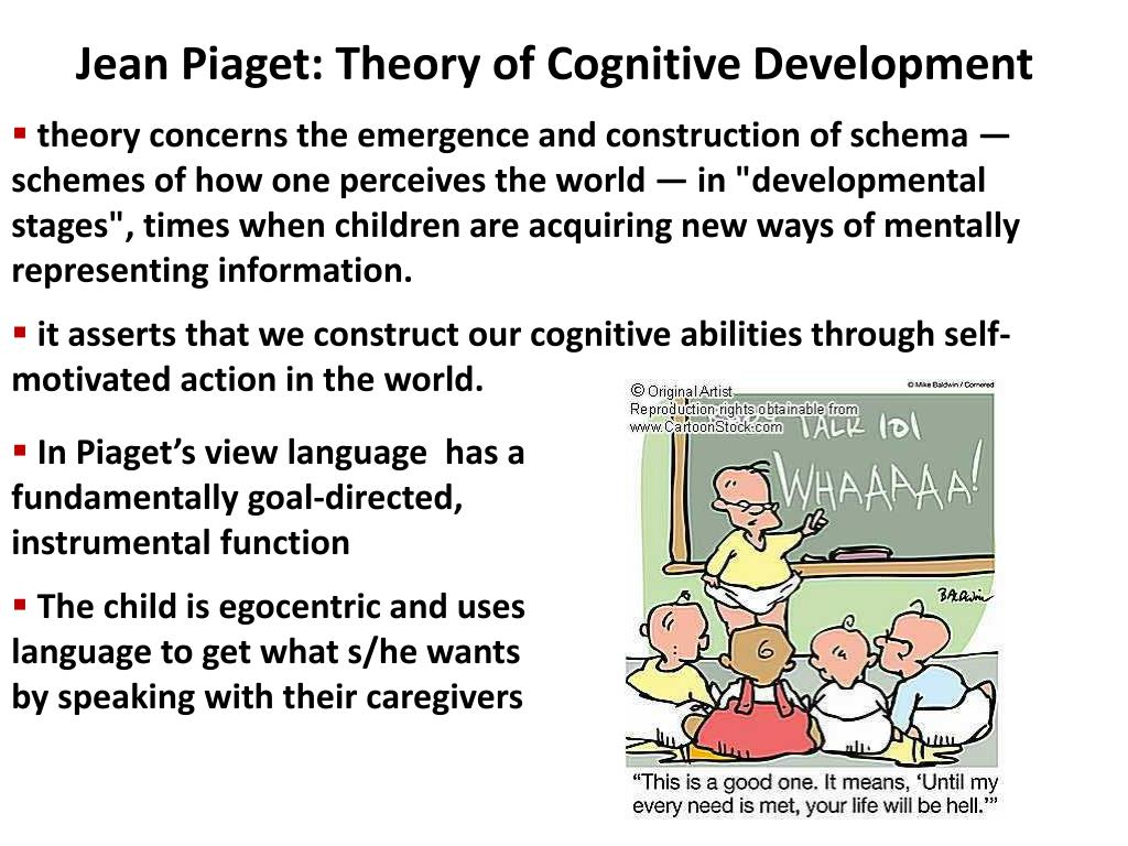 jean piaget theory of cognitive development essay Jean piaget cognitive development theory the way we consider development and disability has started to change with these progressions come new potential outcomes for moving toward the treatment of kids with disabilities.