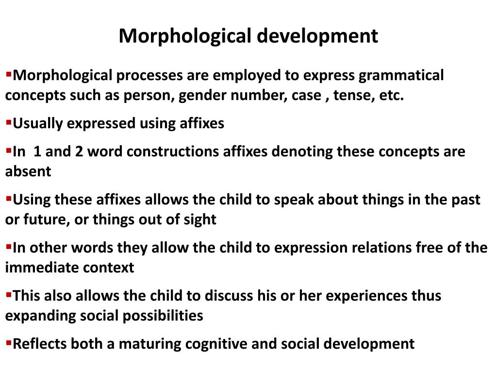Morphological development