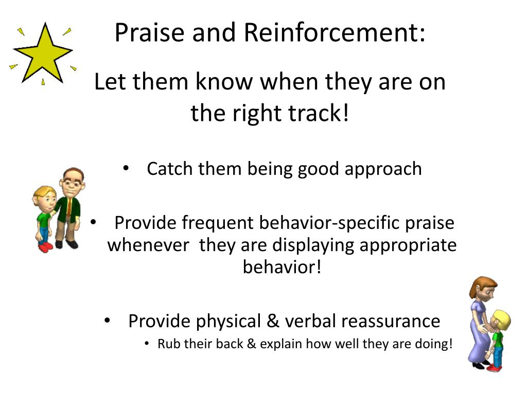 Praise and Reinforcement: