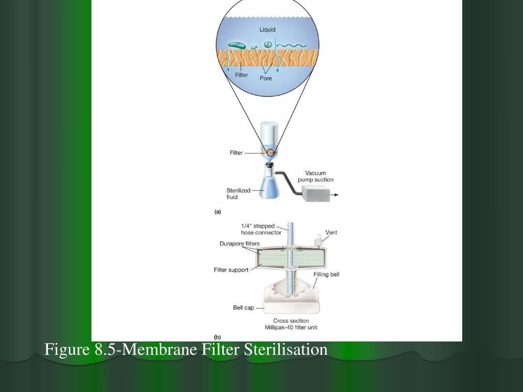 Figure 8.5-Membrane Filter Sterilisation