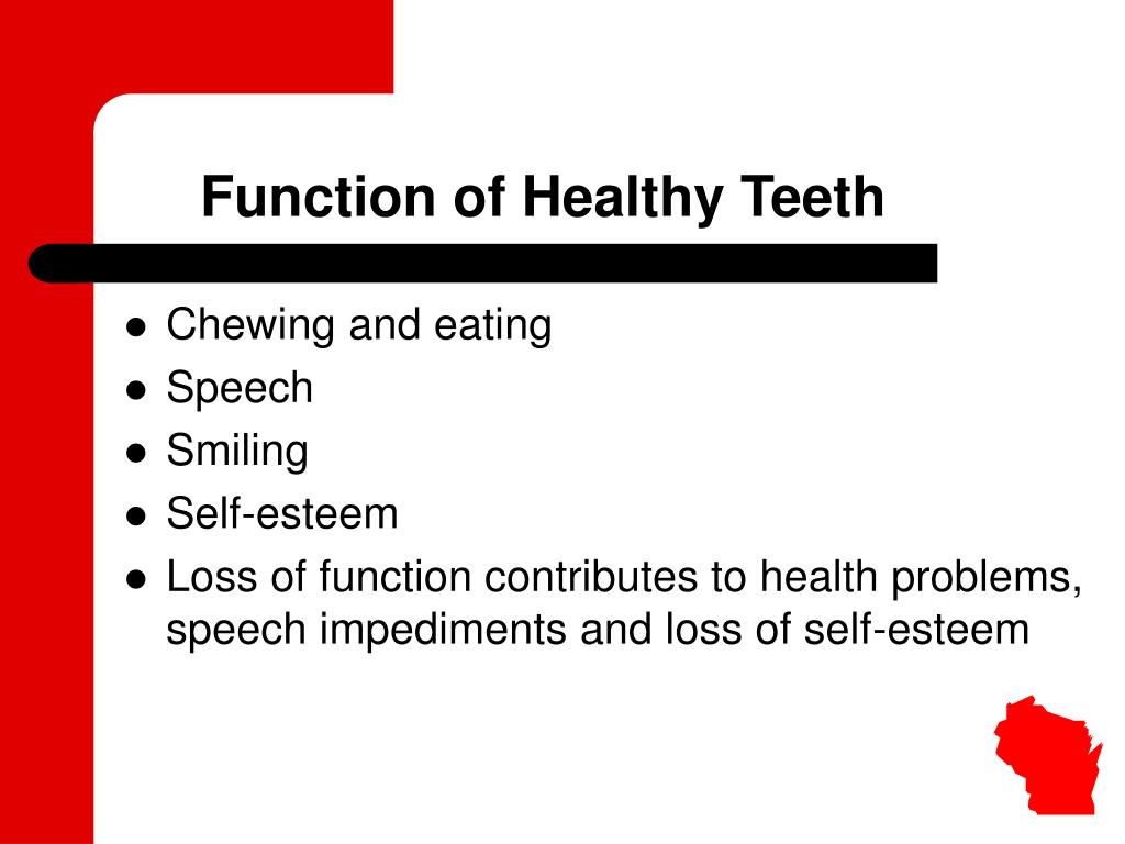 Function of Healthy Teeth