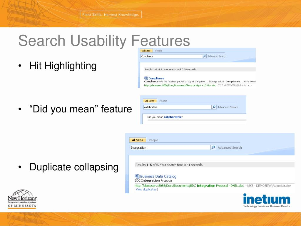 Search Usability Features