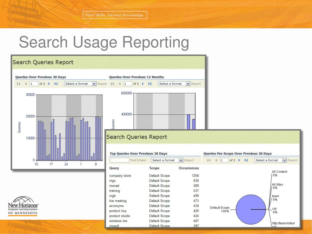 Search Usage Reporting