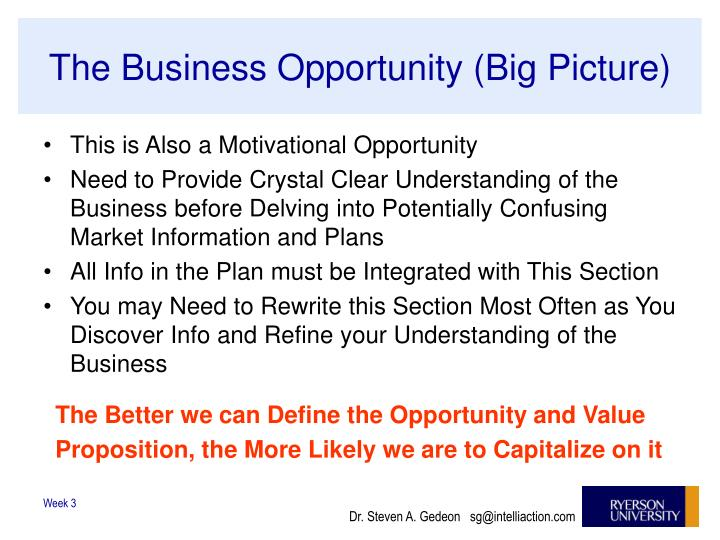 The Business Opportunity (Big Picture)