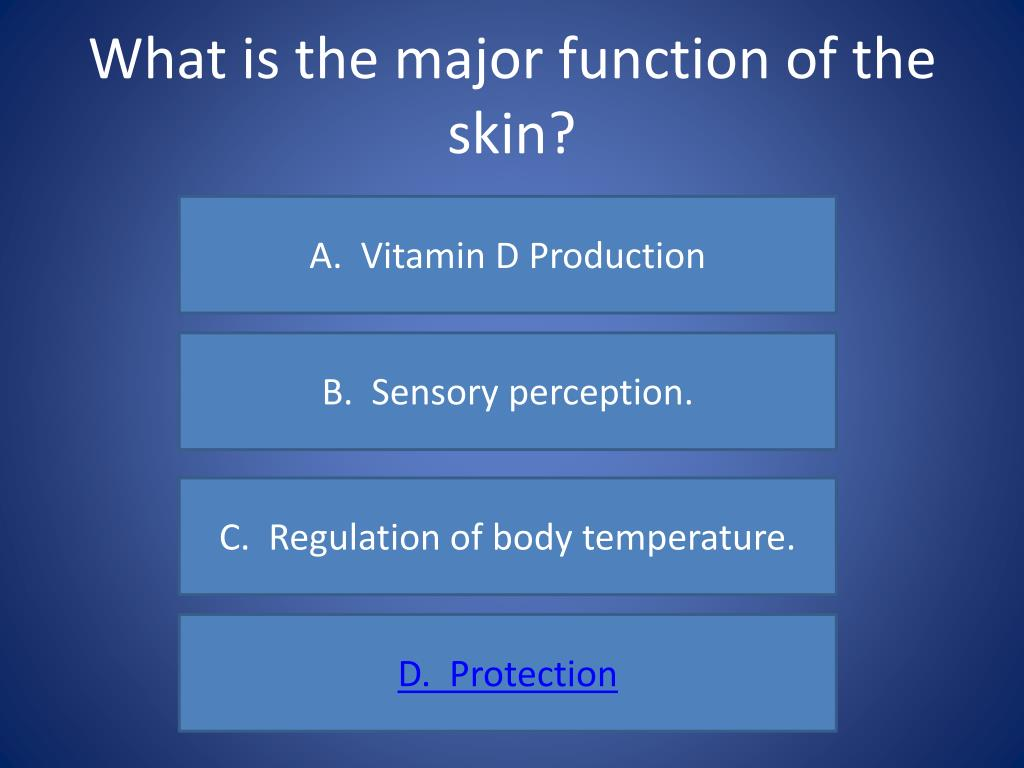 What is the major function of the skin?