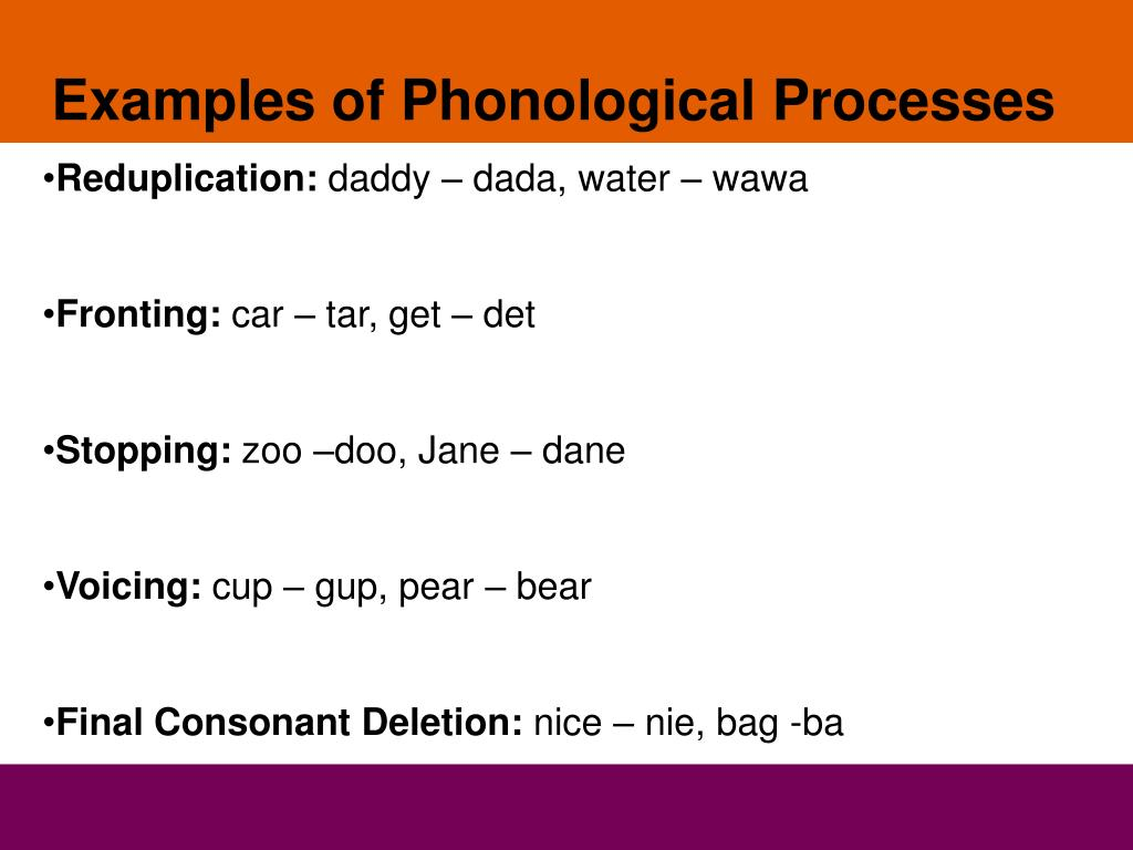 Examples of Phonological Processes