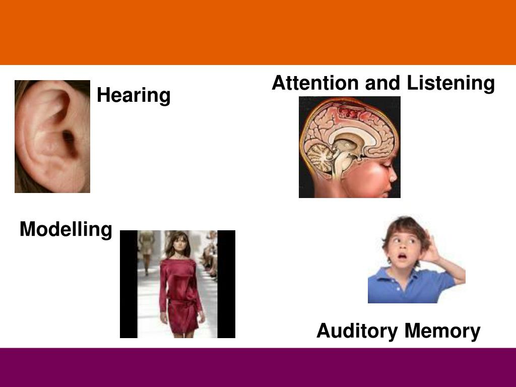 Attention and Listening