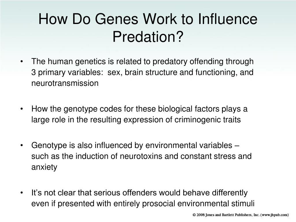 How Do Genes Work to Influence Predation?