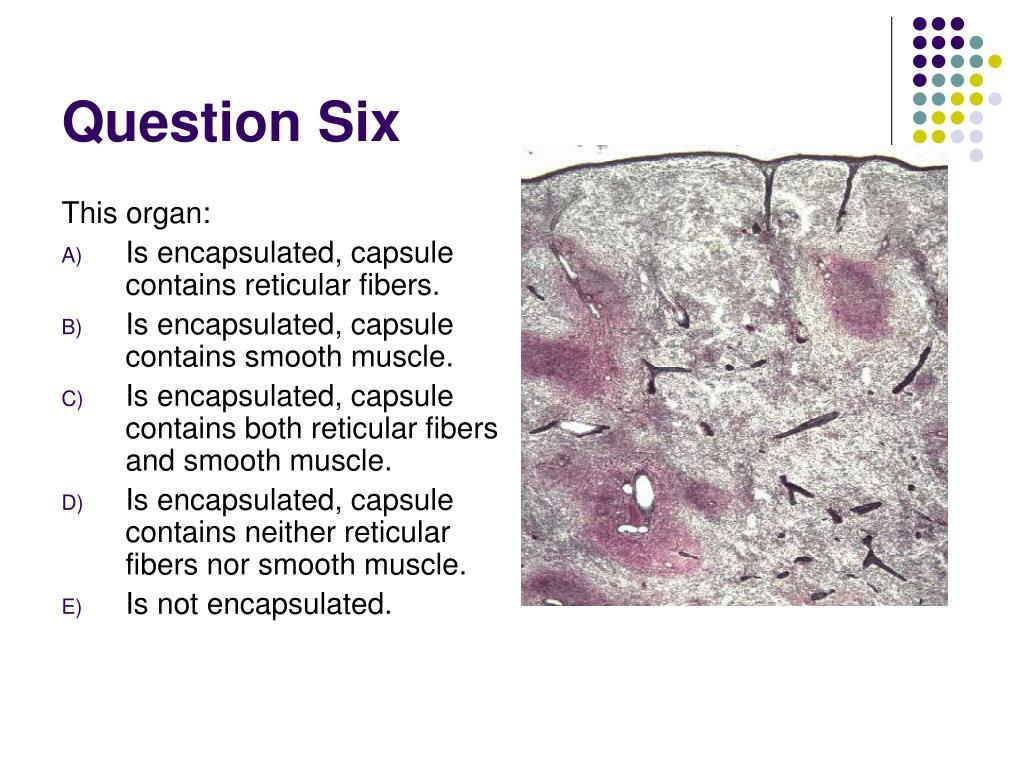 Question Six
