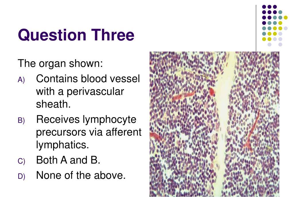 Question Three