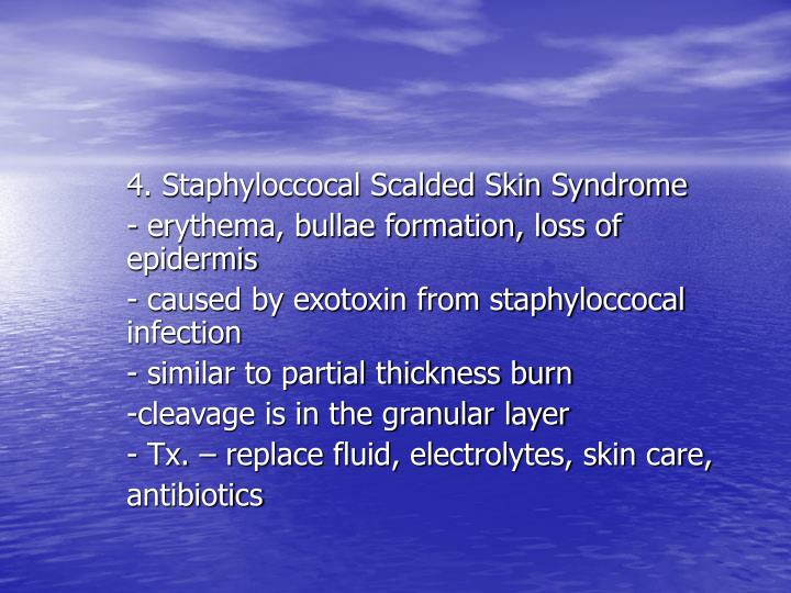 4. Staphyloccocal Scalded Skin Syndrome