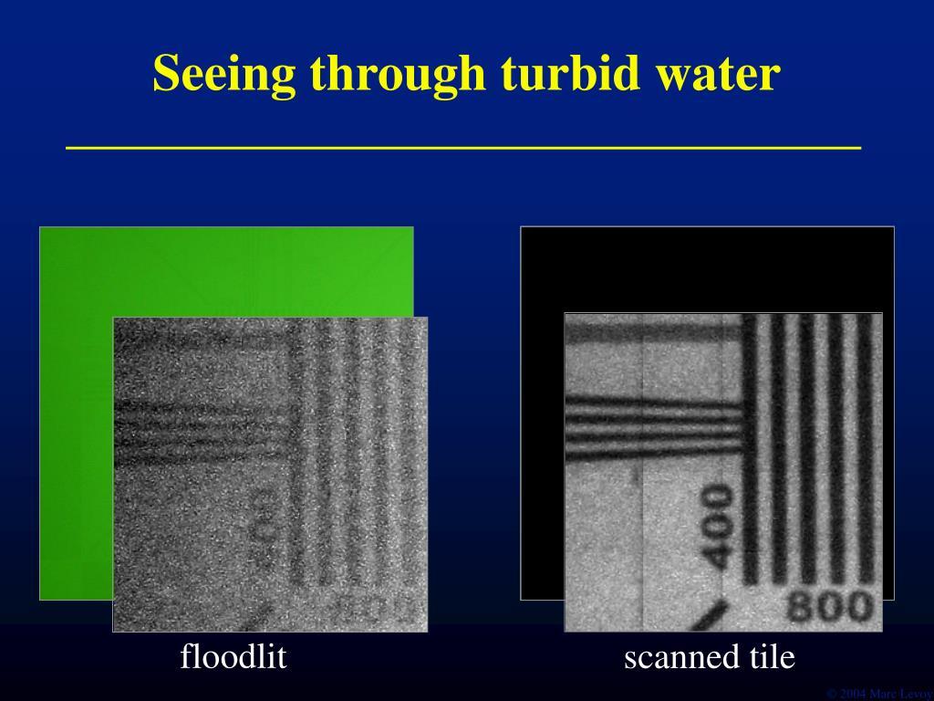 Seeing through turbid water