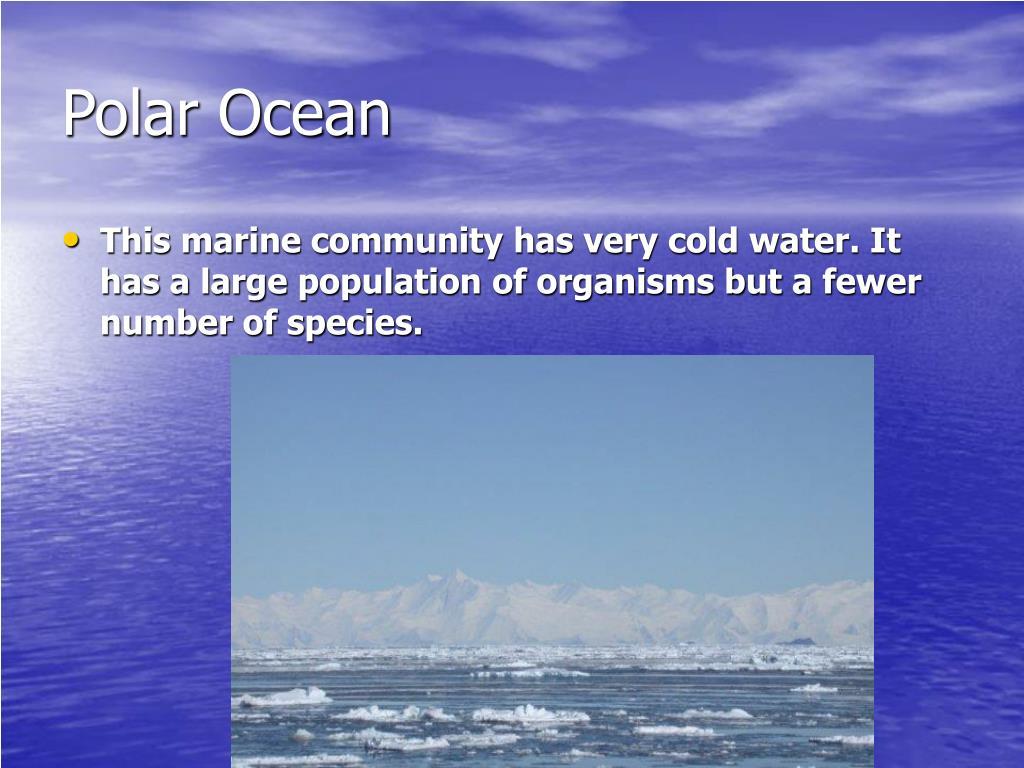 Polar Ocean
