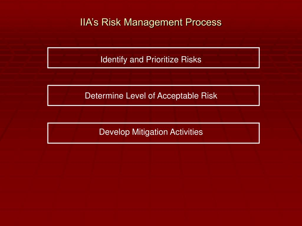 IIA's Risk Management Process