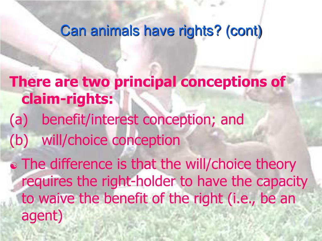 Can animals have rights? (cont)